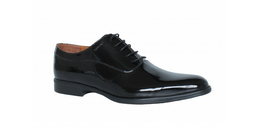 Elegant Shoes - Black  Lak